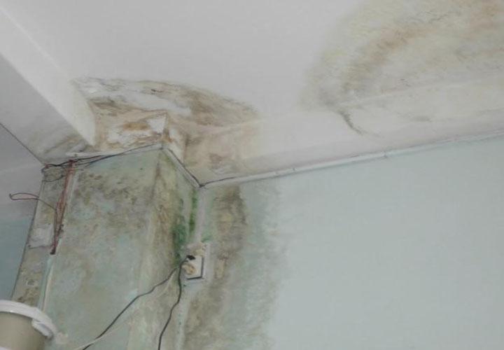 Có nên sử dụng màng chống thấm sika tại nghệ an cho toàn bộ công trình